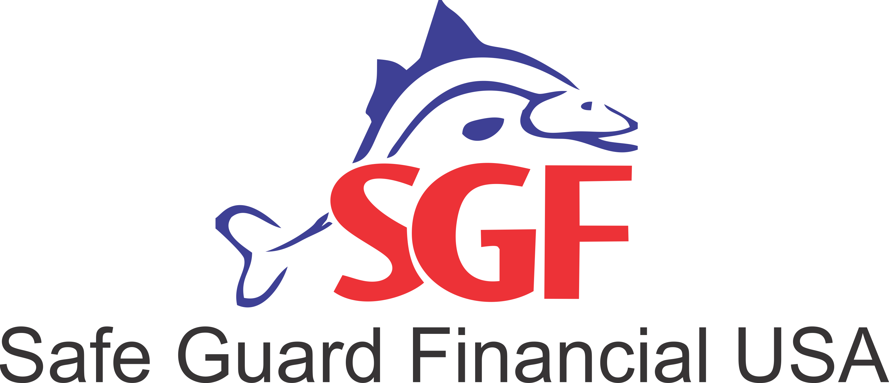 Safe Guard Financial USA